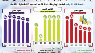 صورة بالرغم من تداعيات الوباء على الاقتصاد العالمي:  المؤسسات الاقتصادية الدولية تؤكد نجاح مصر في التعامل مع أزمة كورونا
