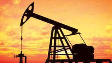 صورة أسعار النفط تسجل 44.08 دولار لبرنت و41.25 دولار للخام الأمريكى