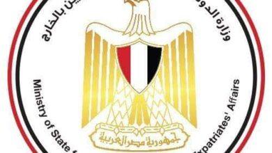 """صورة الرئيس عبد الفتاح السيسي راعيا لمبادرة وزارة الهجرة """"اتكلم عربي"""""""