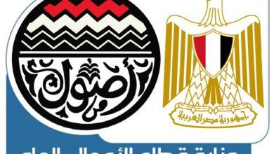 صورة وزارة قطاع الأعمال العام توضح جهود تطوير نادى غزل المحلة