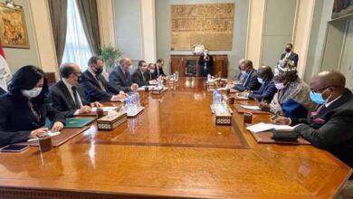 صورة شكري يتناول قضية سد النهضة مع منسق خلية العمل المعنية بالرئاسة الكونغولية للاتحاد الأفريقي.