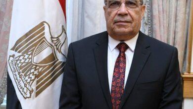 صورة وزير الإنتاج الحربي يبحث مع الوايلر فريد وسيركور التعاون المشترك