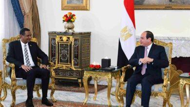 صورة الرئيس السيسى :  مصر والسودان قضية المياه أمن قومي