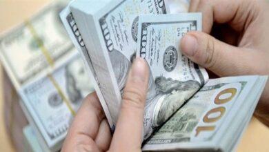 صورة تعرف على أسعار الدولار صباح اليوم السبت