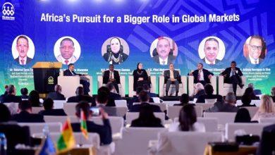 صورة وزيرة الصناعة : نخطط لتدشين منصة رقمية للترويج للمنتجات الافريقية